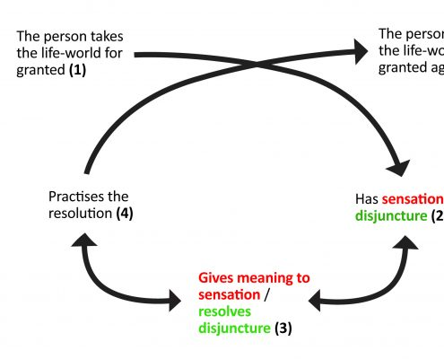 Fig 3. Jarvis's learning from primary experience model applied to immersive (red) and discursive (green) exhibition designs.
